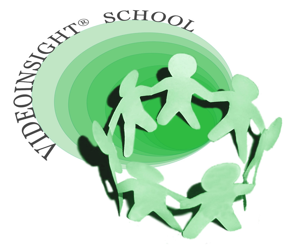 LOGO VIDEOINSIGHT SCHOOL