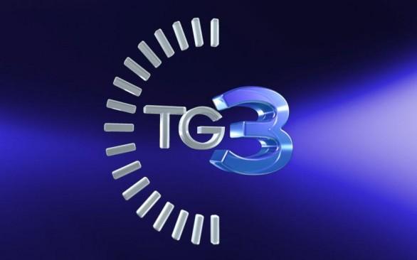 tg31-586x3661