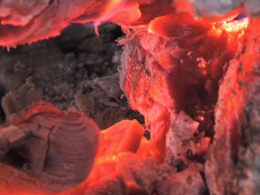 laure_prouvost_2012_it_heat_heat